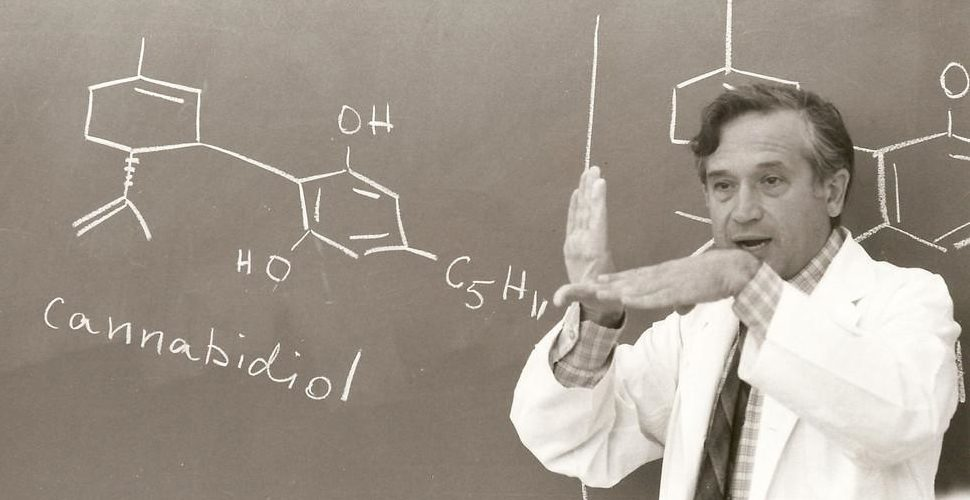 Découverte molécule CBD