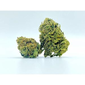 Fleurs de CBD - Blueberry Cookies - CBD420 bud