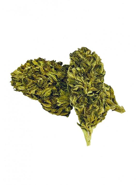 Fleurs de CBD - Chill Bud - 10gr - B-CHILL bud