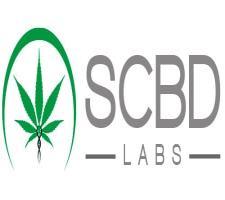 logo-SCBD