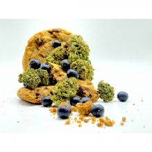 Fleurs de CBD - Blueberry Cookies - CBD420