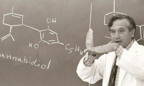 raphael-mechulam-molecule-CBD.jpg